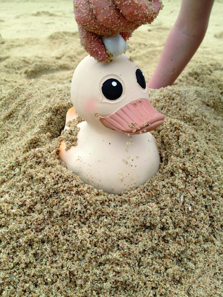 hevea_kawan_toy_at_the_beach_cmyk.jpg
