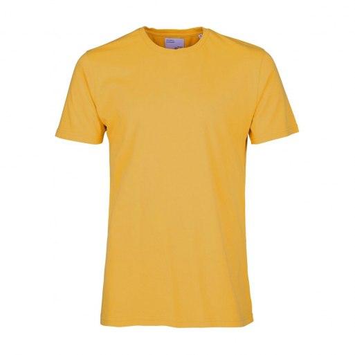 cs1001_-_burned_yellow_-_main.jpg