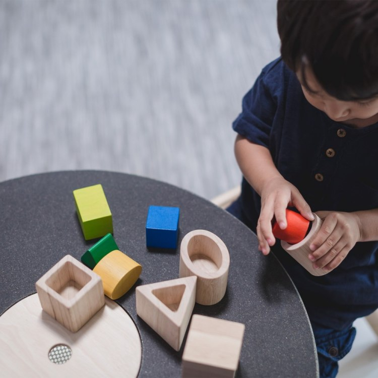 5391-wooden-toys-learning-education-geo-matching-boxes-hover.jpg